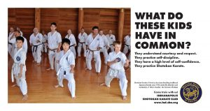Karate Classes For Kids In Indianapolis